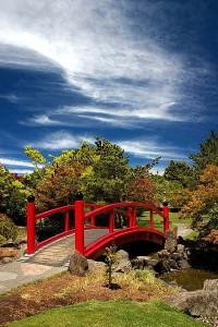 Китайский сад, мостик через пруд
