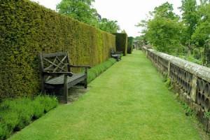 Живая изгородь, место для отдыха