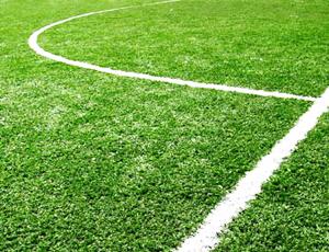 Спортивный газон своими руками