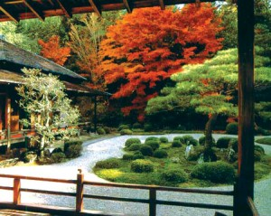 Японский сад во дворе