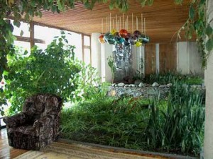 Зимний сад - уголок живой природы