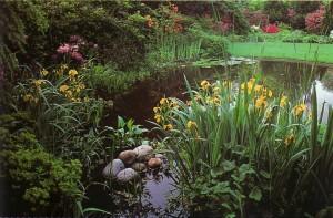 Пруды садовые, строительство пруда