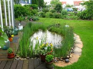Пруд садовый на вашем участке