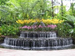 Сад на дачном участке