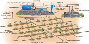 Проектирование системы полива