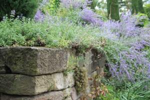 С натуральным камнем идеально сочетаются полевые травы