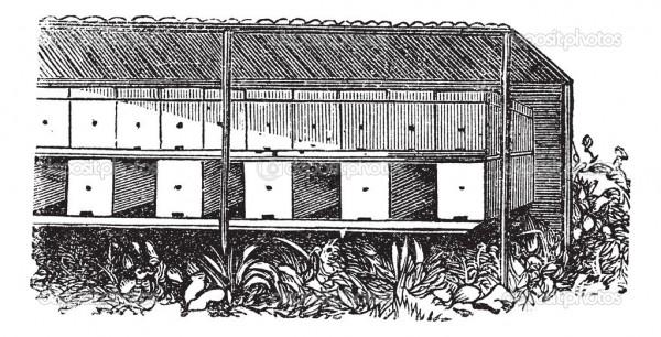 Схема пасеки в закрытом павильоне
