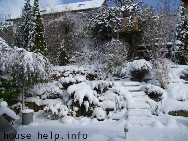 Летний сад зимой