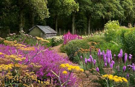 Для создания прерийного сада необходимо высеивать многолетние травы и злаковые растения.