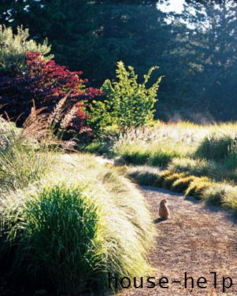 Для обустройства красивого и гармоничного сада вам хватит всего лишь трех-четырех видов растений