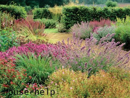 Прерийный сад в ландшафтном дизайне это одновременно гармония и разнообразие