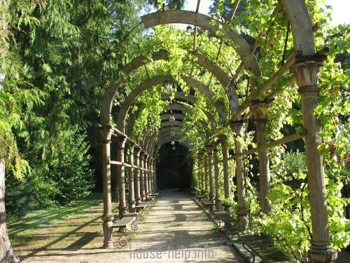 С помощью арок можно соорудить некое подобие туннеля