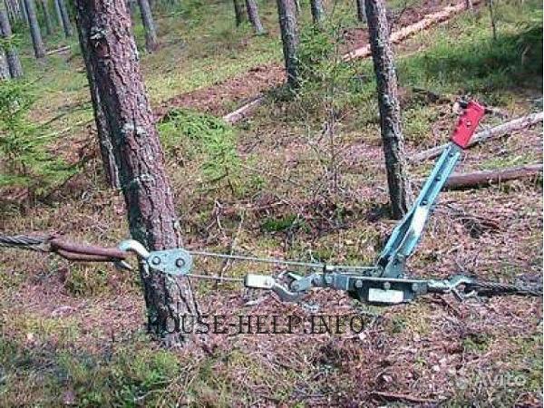 ставить сколько стоит выкорчевать деревья на участке 10 соток экспресс-тестов